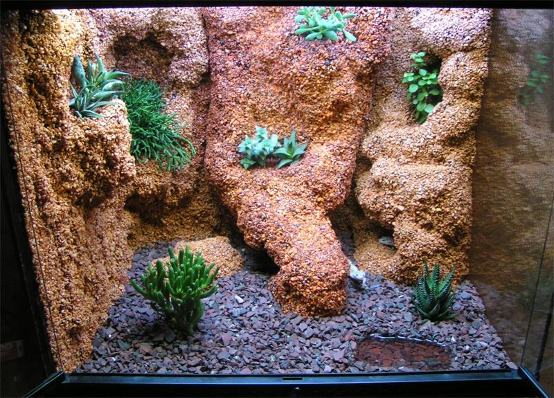 Gecko Terrarium Ideas